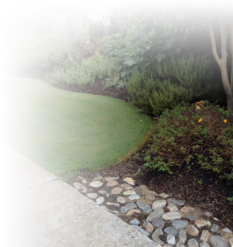 outer banks lawn services irrigation
